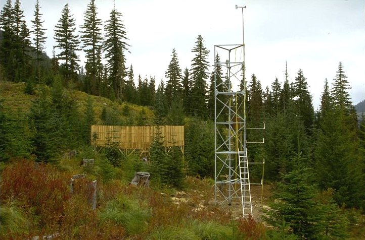 Upper Lookout Climate Station, Andrews Experimental Forest (Al Levno 10/94)