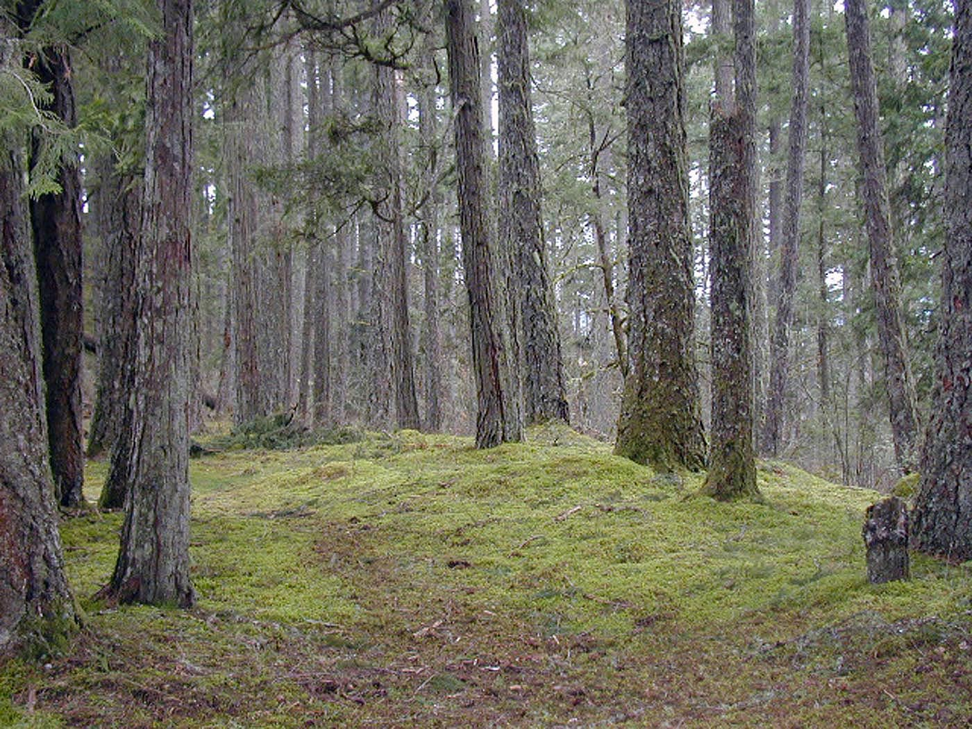 Pacific Northwest Interagency Natural Areas Network